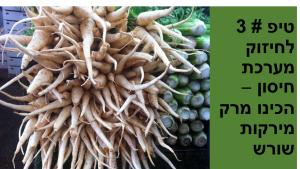 מערכת חיסון הכינו מרק ירקות שורש בזמן מחלה